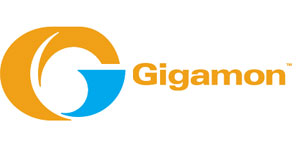 Gigamon teams with RSA - Chief IT - For IT Leaders & Decision Makers